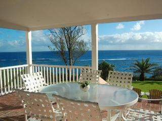 C55. John Smiths Ocean View House - Flatts Village vacation rentals