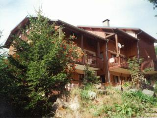 Chalet Le Flocon. - Saint-Martin-de-Belleville vacation rentals
