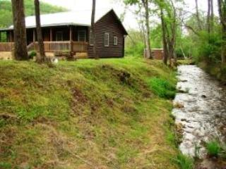 CLIMBING BEAR CREEKSIDE CABIN near Cherokee - Cherokee vacation rentals