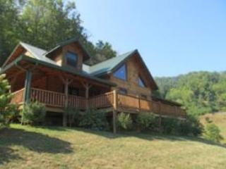 WILD TURKEY RUN near Cherokee - Bryson City vacation rentals