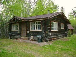 Charming One Room Log Cabin on White Iron Lake - Minnesota vacation rentals