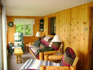Charming Cabin with Great View on White Iron Lake - Minnesota vacation rentals
