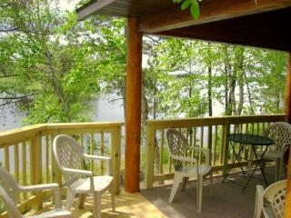 Beautiful Island Getaway Cabin on Bear Island Lake - Minnesota vacation rentals