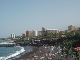 Apartment in Puerto de la cruz - Massa Lubrense vacation rentals