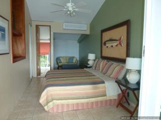 Oceanfront Vacation Rental with Magnificent View - Dorado vacation rentals