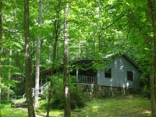 My Little Blue House - North Georgia Mountains vacation rentals