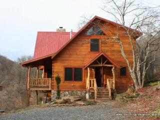 20% OFF SUMMER SALE*Cozy Log Cabin*View*Hot tub - Zionville vacation rentals