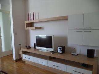 IVANA ****APARTMENT - Belgrade vacation rentals