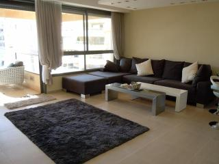 LUXURY 4 BR FOR UP TO 8 PEOPLE + PARKING - Tel Aviv vacation rentals
