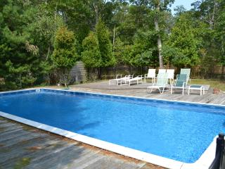 5 bedrooms East Hamptons house w/ pool, WiFi, BBQ - East Hampton vacation rentals