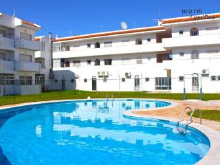 Carol Green Apartment - Portugal vacation rentals