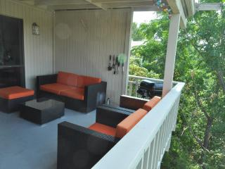 The Double View - 2/2 with two decks in Zilker! - Austin vacation rentals