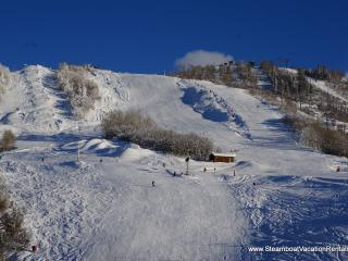 Storm Meadows - Christie Base #353 - Steamboat Springs vacation rentals