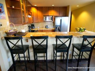 Terraces at Eagle Ridge  #N21 - Steamboat Springs vacation rentals