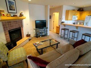 Terraces at Eagle Ridge #N23 - Steamboat Springs vacation rentals