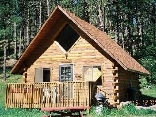 Washington Cabin-New Hot Tub in 2014 - Hill City vacation rentals