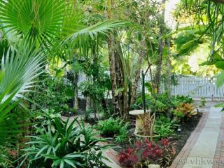 Elegant Key West Tree House ~ Monthly Rental - Key West vacation rentals