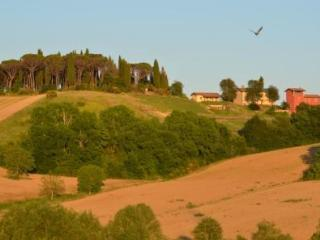 Casale, house  in an organic farmstay in Umbria - Città Di Castello vacation rentals