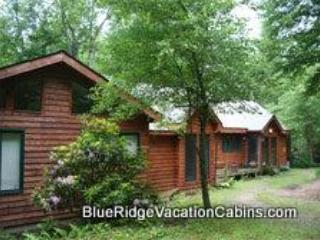 Family Lodge*Steps to River*Minutes to ASU*Hot Tub - Image 1 - Boone - rentals