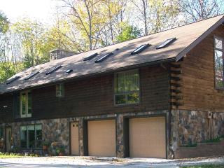 Country Cabin Manor B&B - Alfred Station vacation rentals