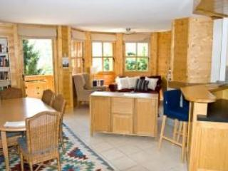 Lovely, sunny chalet near Villars; Hiking, Golf - Barboleusaz vacation rentals