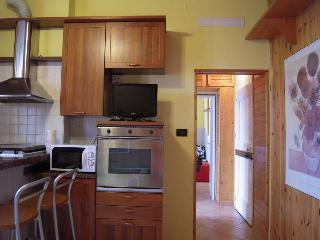 Apartment  in the city center - Emilia-Romagna vacation rentals