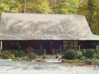 HIGHLAND GAMES*Large Family Cabin*Gametbls*Firept - Valle Crucis vacation rentals