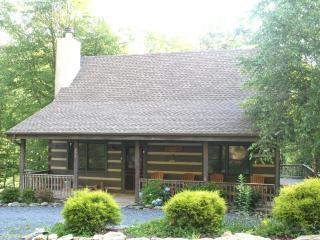 130/NT OFF LABOR DAY*FamilyFavorite*HotTub*PoolTbl - Boone vacation rentals