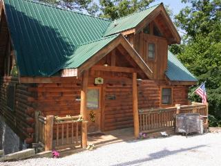 A CLIMBING CUB - Tennessee vacation rentals