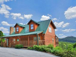 HOLLYWOOD IN THE HILLS - Sevierville vacation rentals