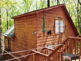OVER THE HILL - Sevierville vacation rentals