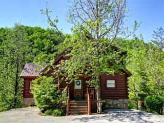 MOUNTAIN PAS - Pigeon Forge vacation rentals