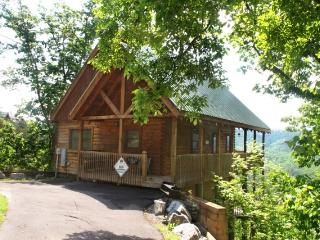 A TREE TOP VIEW - Sevierville vacation rentals