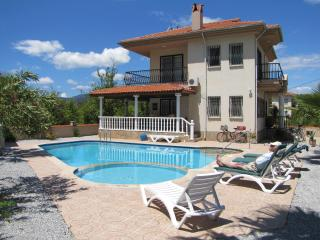Villa Honeypot - Mugla Province vacation rentals