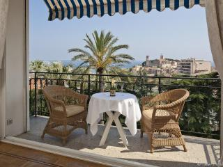 Parc Continental (Owner direct) - Cannes vacation rentals
