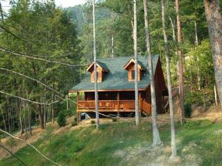 Mountain Hideaway - Sevierville vacation rentals