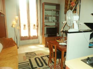 Mezzanine in the Old Nice, 100 mt from the seaside - Nice vacation rentals