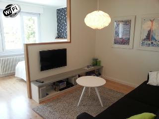 Apartment in Annecy  to rent (French Alps) - Annecy vacation rentals