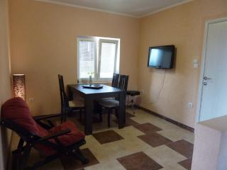A part of our house in Montenegro (1 floor) + car - Serbia vacation rentals