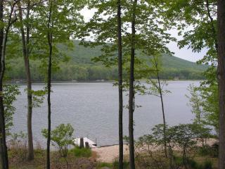 View of private beach and dock from deck - Lakefront Eagle Rock Vacation Home - Hazleton - rentals