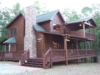 BEAUTIFUL VIEWS OF BRASSTOWN BALD - Blairsville vacation rentals