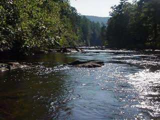 2 Bedroom plus Loft Riverside Retreat on the Toccoa River - Mineral Bluff vacation rentals