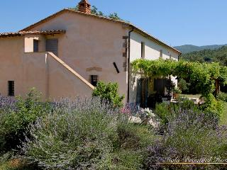 Gorgeous 3 bed 'Country Comfort' - Tuscany - Florence vacation rentals