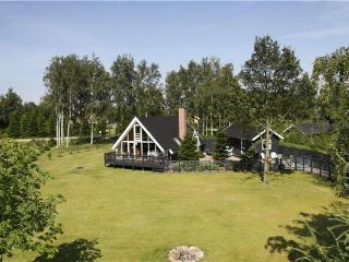 Newly renovated holiday house for 8 persons in Hjarbæk Fjord - Skive Municipality vacation rentals
