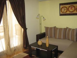 Ideal place for you in Budva - Budva vacation rentals