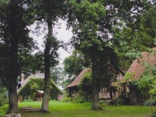 Vacation Home in Hambergen - 807 sqft, newly restored, quiet, rustic (# 3697) - Lower Saxony vacation rentals