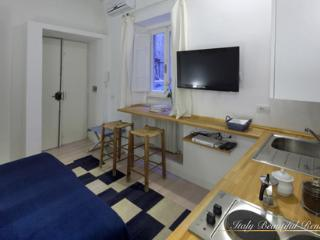 Charming Piazza di Spagna - Two Studios - Florence vacation rentals