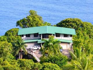 What a View! Crashing Surf Below... - Dominical vacation rentals