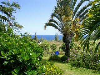 Relax and Enjoy the Gardens by the Sea - Big Island Hawaii vacation rentals