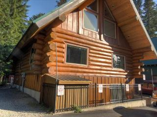 Big Bear Cabin - Government Camp vacation rentals
